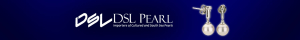 dsl pearl banner